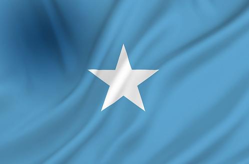 Somalia flagg