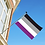 Asexual flagg