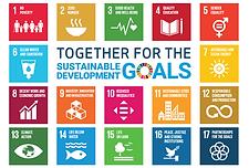 SDG_flagg_FNs_høynivåforum_.png