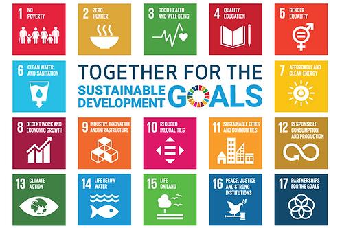SDG Flagg