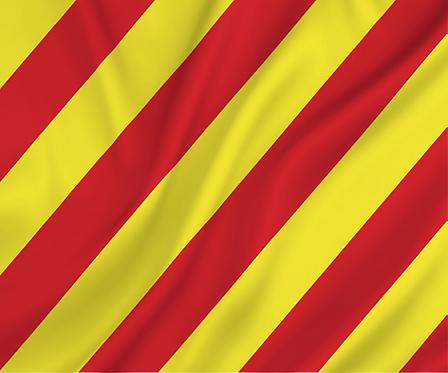 Signal flagget Y