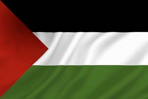 Flagg Palestina