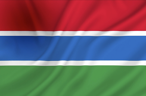 Flagg Gambia