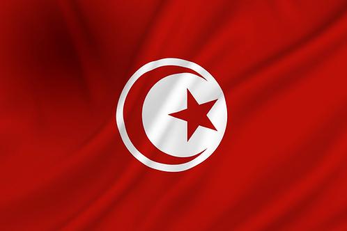 Flagg Tunisia