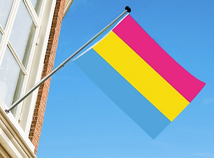 pansexual flagget.png
