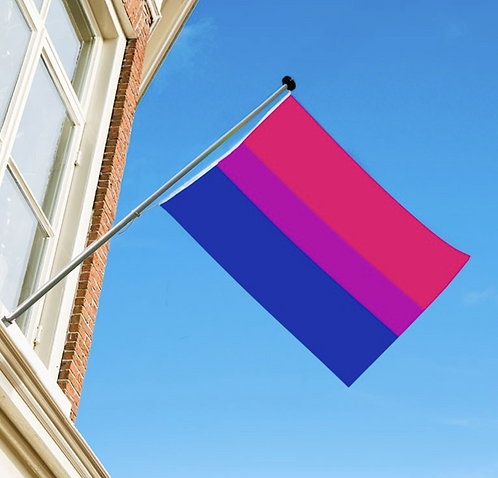 Bipride flagg