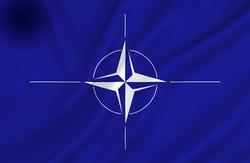 N.A.T.O Det Nordatlantiske Råd