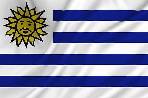 Flagg Uruguay