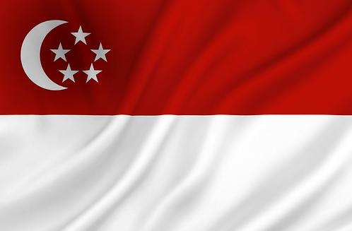 Singapore flagg