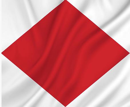 Signal flagget F