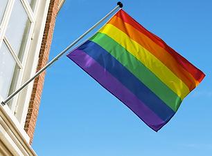 Regnbueflagg.png