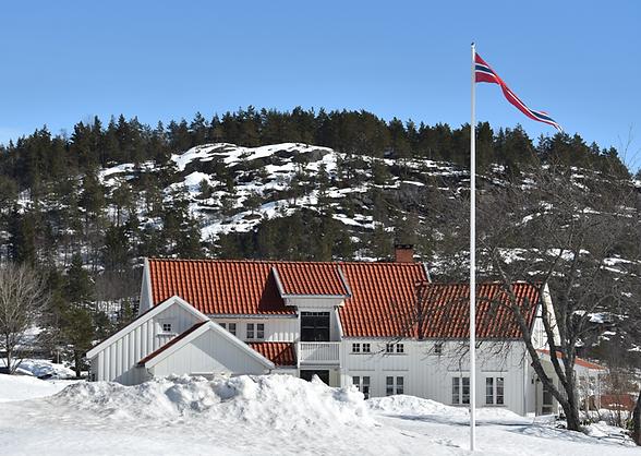 Norsk flagg og navnvimpler bestiller du flaggbutikk, norsk vimpler, vimpel