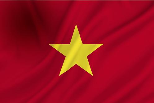 Flagg Vietnam