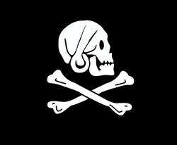 Piratflagg-Henry Everys