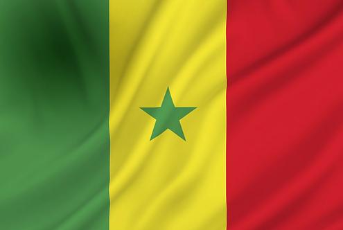 Senegal flagg
