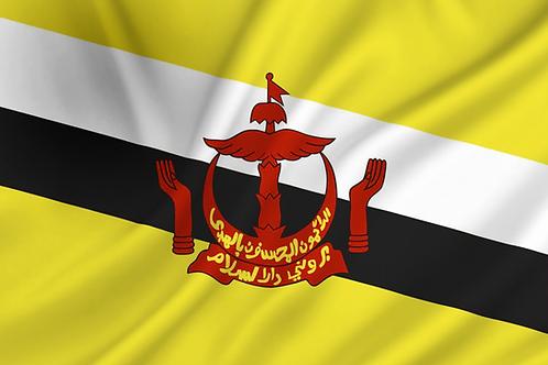 Flagg Brunei