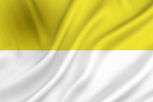 gul-hvit flagg