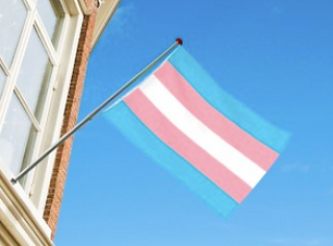 transgender flagg.png