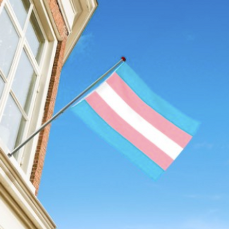 Transgender flagg
