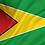 Thumbnail: Flagg Guyana