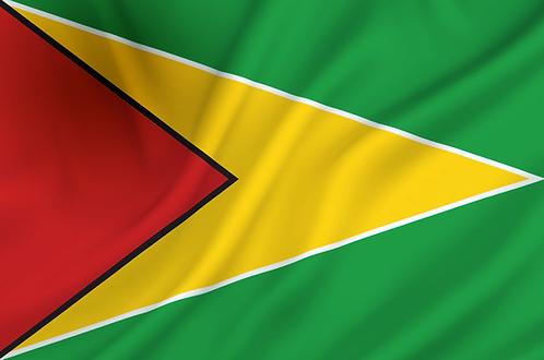 Flagg Guyana