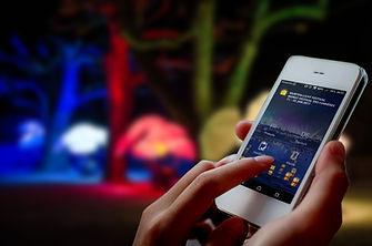 Festival-App.jpg