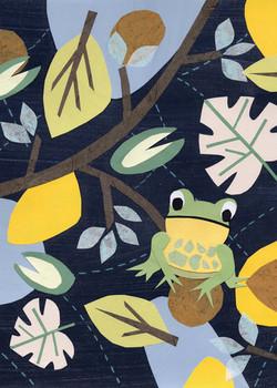 Frog | Paper Collage Illustration ©Cécile Kranzer