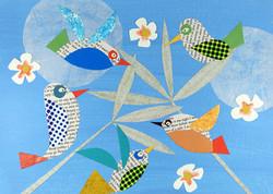 Birds | Paper Collage Illustration ©Cécile Kranzer