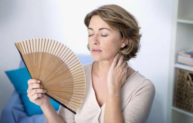 Hot Flashes. Why So?