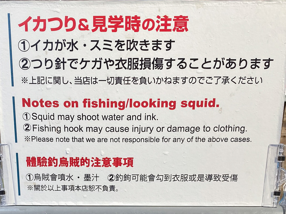 Squid Fishing - Japan