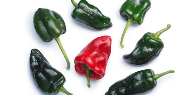 Ancho Grande Chile Pepper