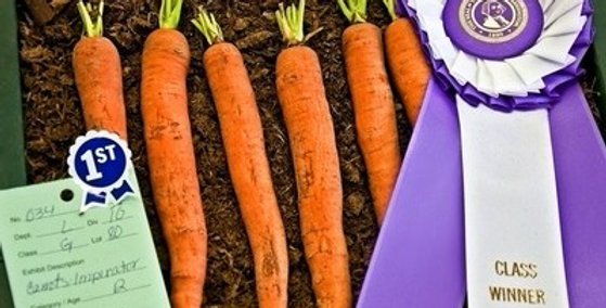 Imperator 58 Carrot