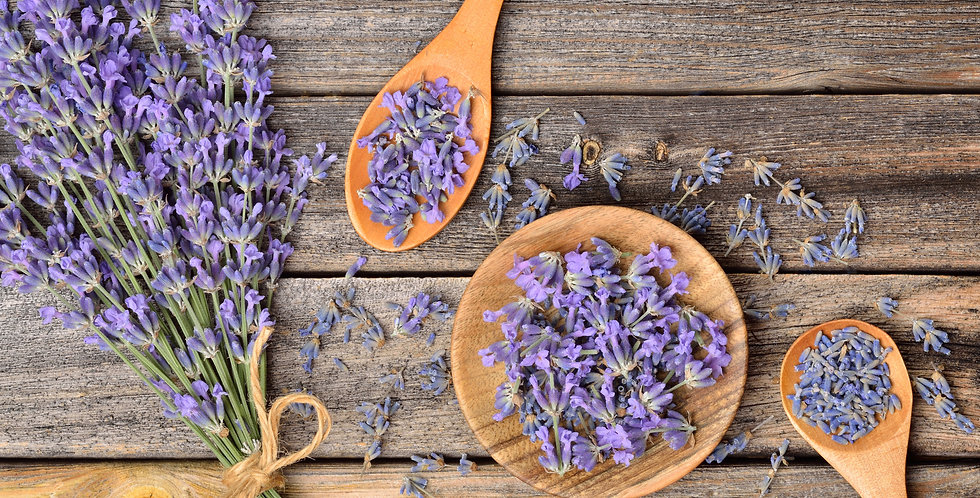 Lavender - Vera