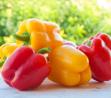Sweet Pepper Seeds