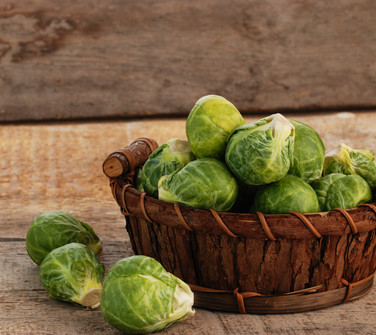 Brusssls Sprouts Seeds