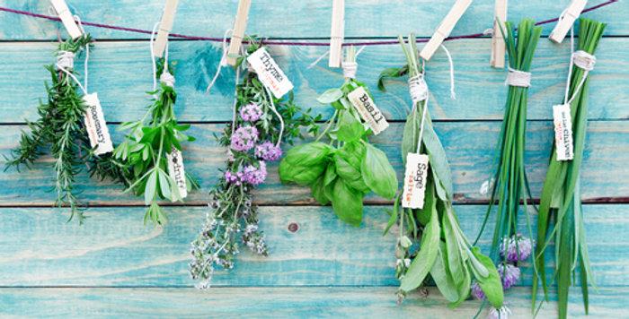 Herb Garden Pack