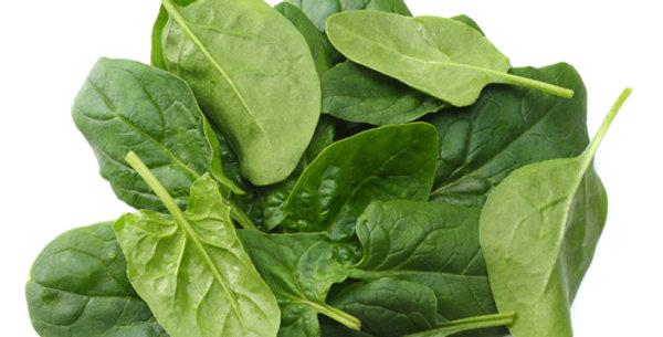 Hybrid #7-R Spinach