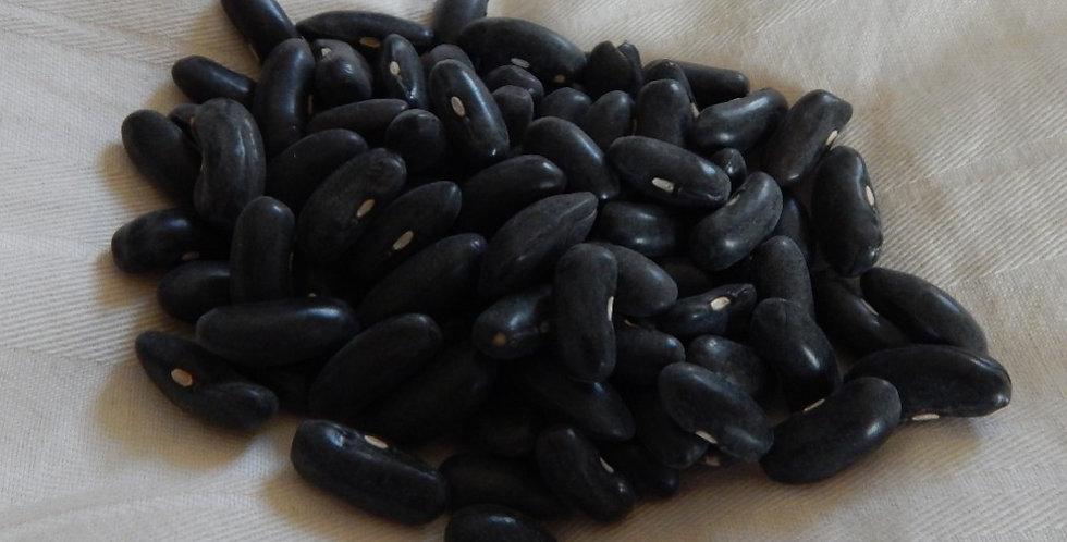 Cherokee Yellow Wax Bean