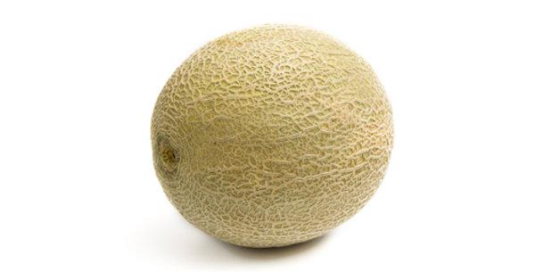 Hale's Best Jumbo Cantaloupe