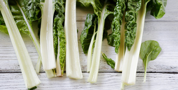 Large White Ribbed Swiss Chard