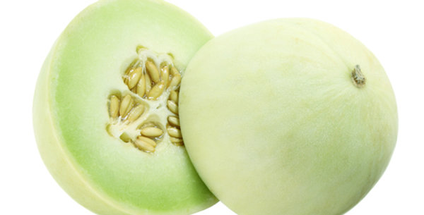 Green Fleshed Honeydew