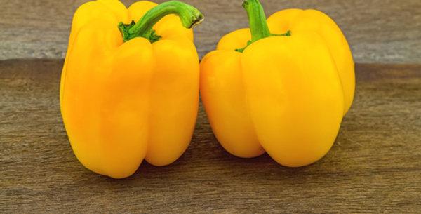 Golden California Bell Pepper