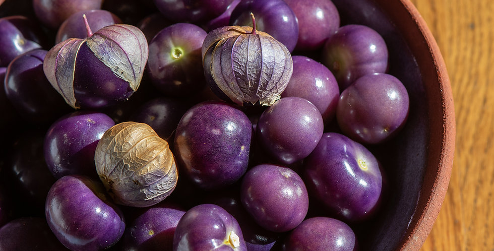Really Purple Tomatillo