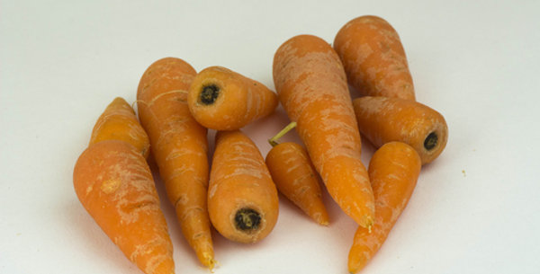 Chantaney Carrot