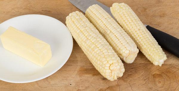 Silver Queen Hybrid Corn
