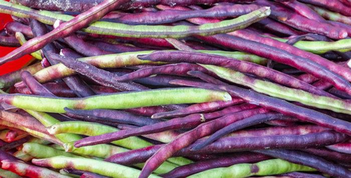 Pinkeye Purple Hull Cowpea