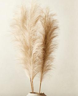 Faux Pampas Grass Stem Set of 3