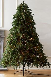 7.5' Downswept Pine Christmas Tree