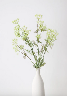 Fake Dill Flowers