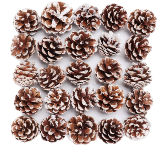 Christmas Pinecone Wood Frosted White Ornaments